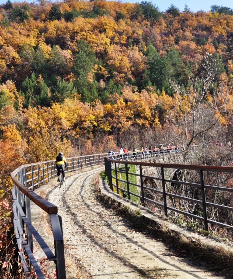 Parenzana biking (4)
