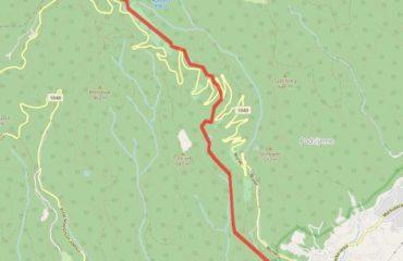 Leustek GPS Trail